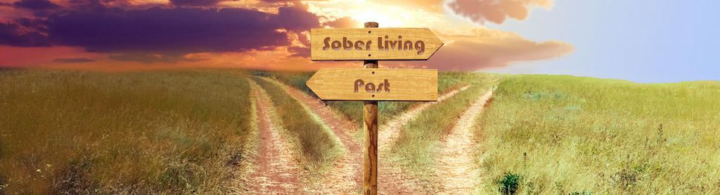 Eco Sober House Overview: Guide to Sober Living